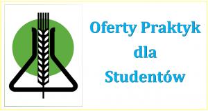 oferty praktyk2